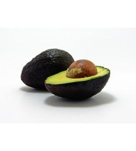 hass avocado online
