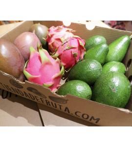 aguacate pitaya y mango