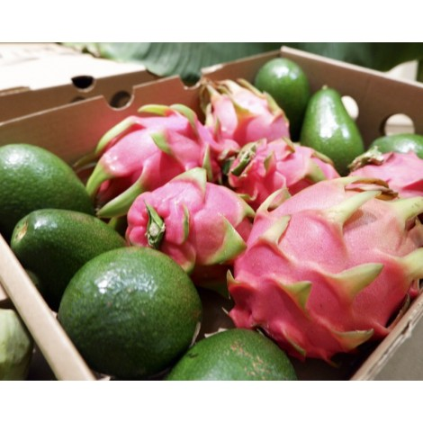 pitaya y aguacate