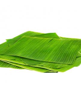 hojas para hayacas