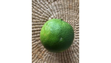 Bergamota Citrus Bergamia